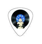 "Fender ""Medium"" Guitar Pick - Random!"