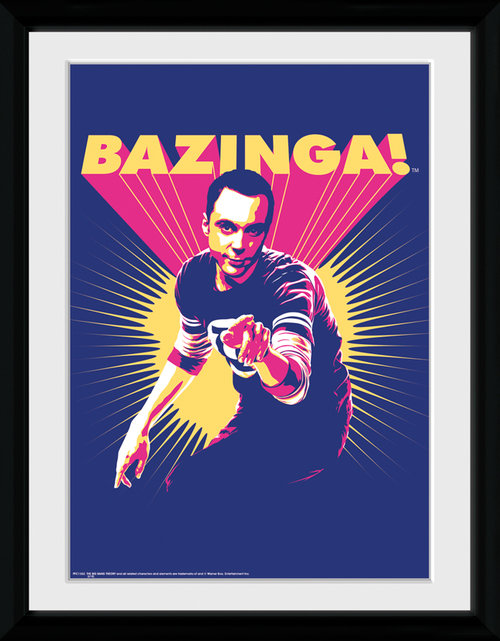 Poster The Big Bang Theory 116014