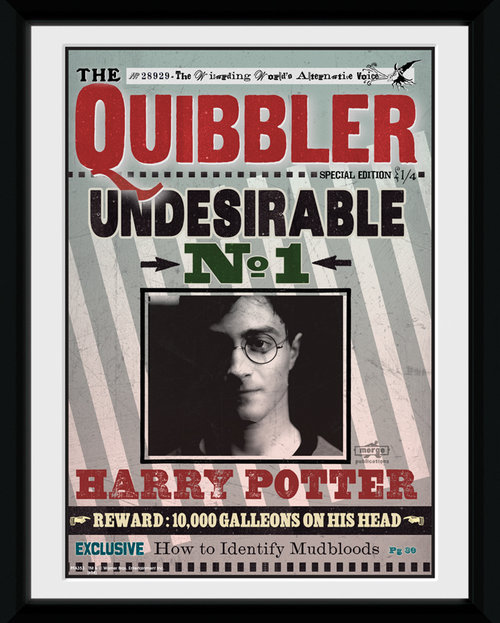 Poster Harry Potter  116045