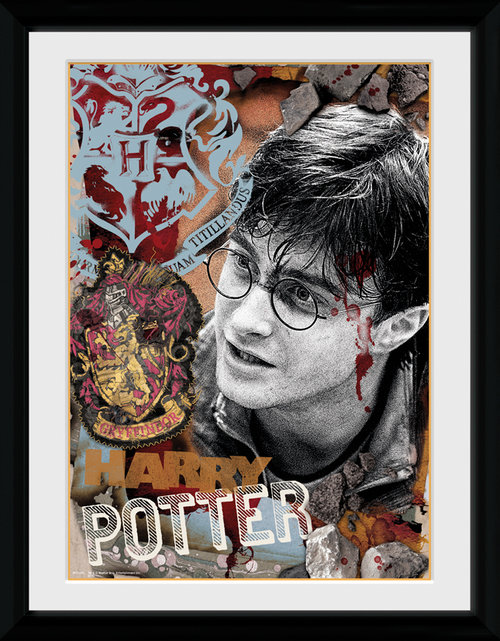 Poster Harry Potter  116048
