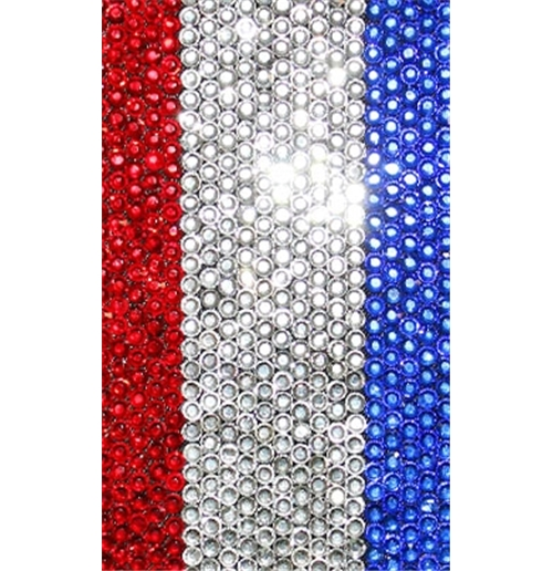 iPhone Cover Frankreich Fussball 118837
