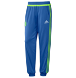 Trainingshose Ajax 2015-2016 (Blau)