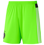 Shorts Ajax 2015-2016 Away