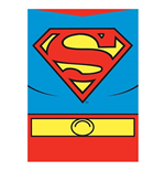 Magnet Superman 195309