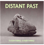 Vinyl Everything Everything - Distant Past