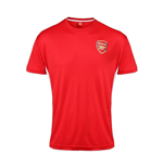 Trikot Arsenal Training (Rot)