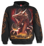 Sweatshirt Spiral Awake The Dragon