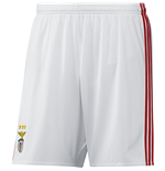 Shorts Benfica  229164