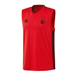 Trainings T-Shirt Benfica 2016-2017 (Rot)