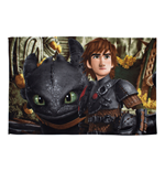 Bettzubehör How to Train Your Dragon 230434