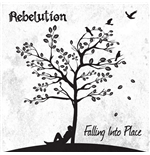 Vinyl Rebelution - Falling Into Place