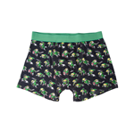 Boxershorts Zelda -  All over print, Link