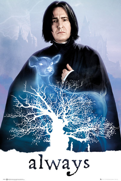 Poster Harry Potter  248371