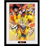 Bilderrahmen Dragon ball 252601