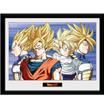 Bilderrahmen Dragon ball 252603