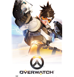 Poster Overwatch 254363