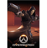 Poster Overwatch 254364