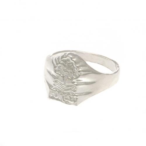 Schmuck Nottingham Forest 255150