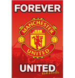 Poster Manchester United FC 255289