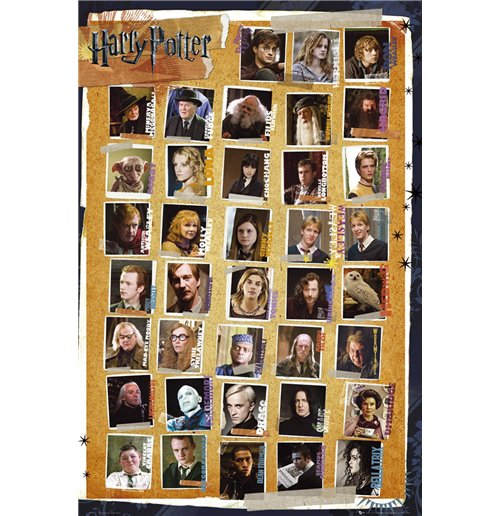 Poster Harry Potter  7 - Characters Maxi Poster (61x91,5 Cm)