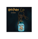 Schlüsselring Harry Potter  262887