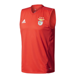 Top Benfica 2017-2018 (Rot)