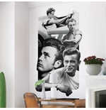 Wandtattoo James Dean  274637