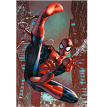 Poster Spiderman 275243