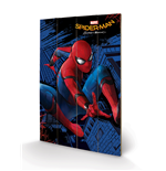 Kunstdruck Spiderman 276283