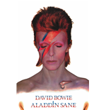 Poster David Bowie  288144