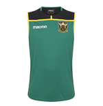 Top Northampton Saints 2018-2019 (Grün)