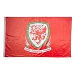 Flagge Wales Fußball 2018-2019
