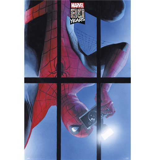 Poster Spiderman 397343