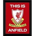 Bild Liverpool This is Anfield