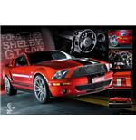 Poster Easton Red Mustang
